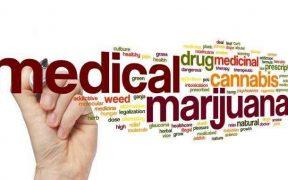 Medical marijuana to treat cancer
